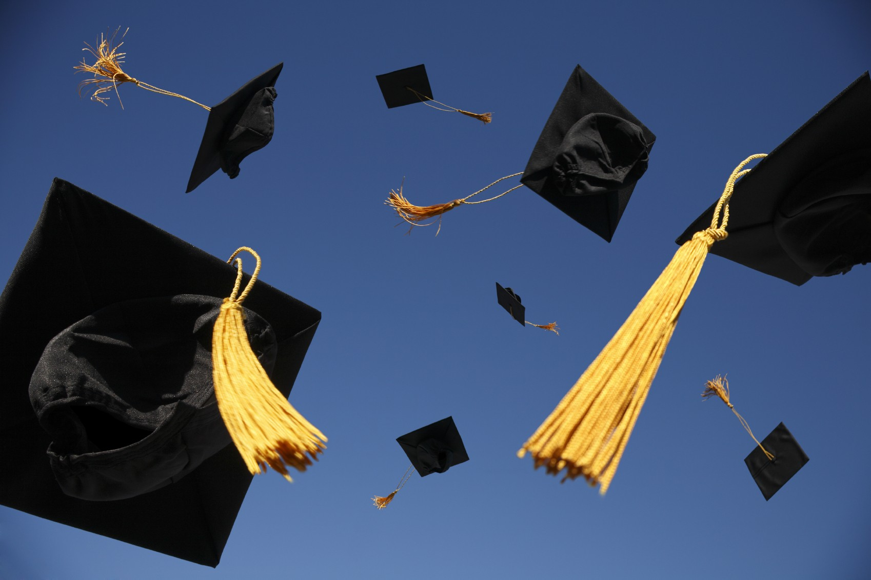 after graduation what s next insights from texas back graduation